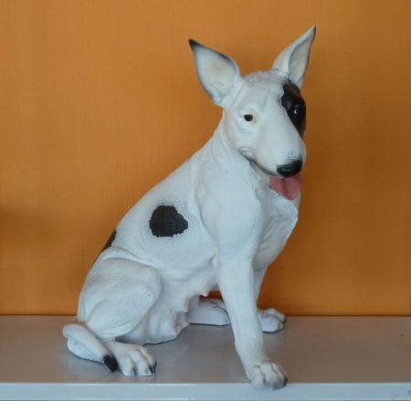 Kutya-Pitbull-ülő