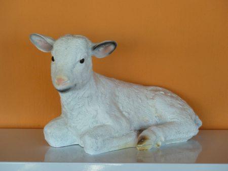 Bárány-fekvő-25cm