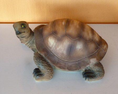 Teknős-13cm