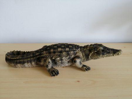 Krokodil-31cm hosszú