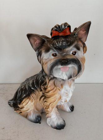 Kutya-Yorki-ülő/mini/tarka