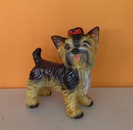 Kutya-Yorki-álló/mini/tarka