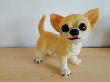 Kutya-Chihuahua/Csivava