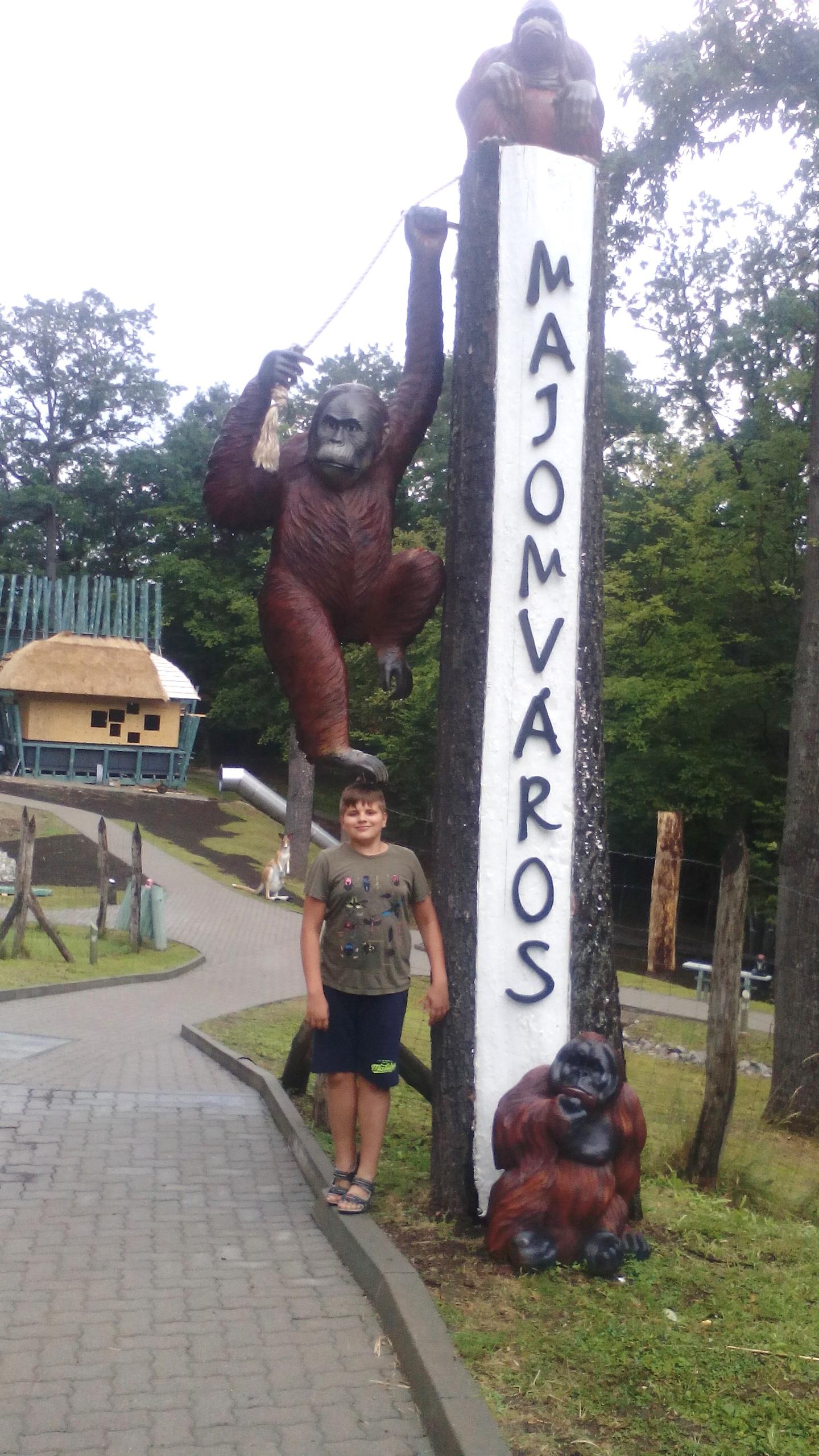 Orángutánok