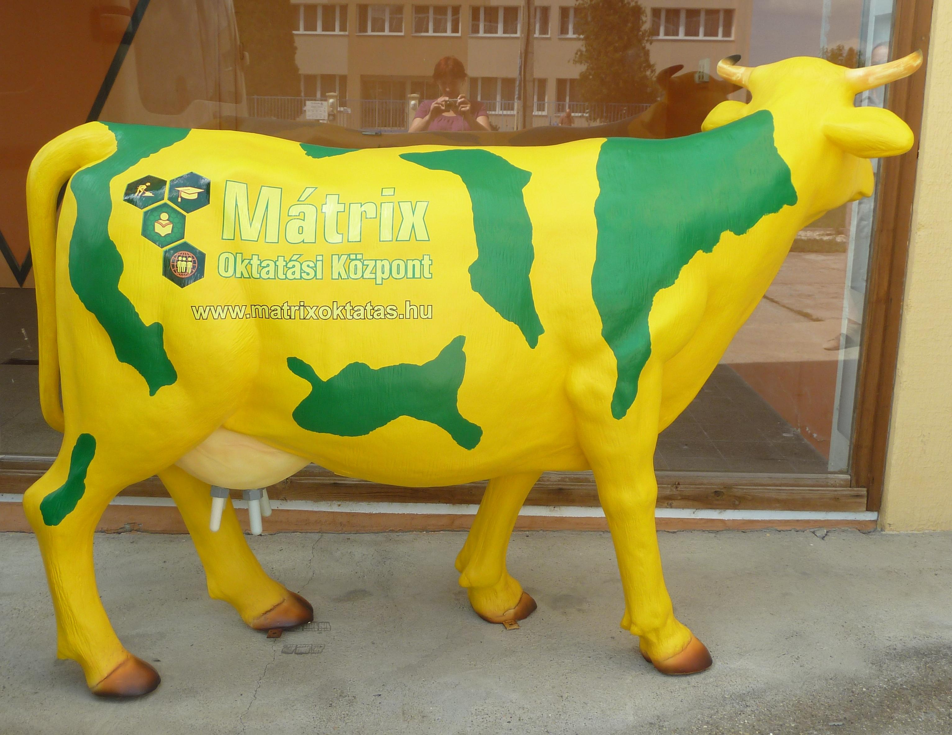 Mátrix fejhető tehén - logo matricázva