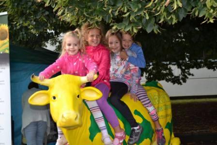 A gyerekek birtokba vették a tehenet.