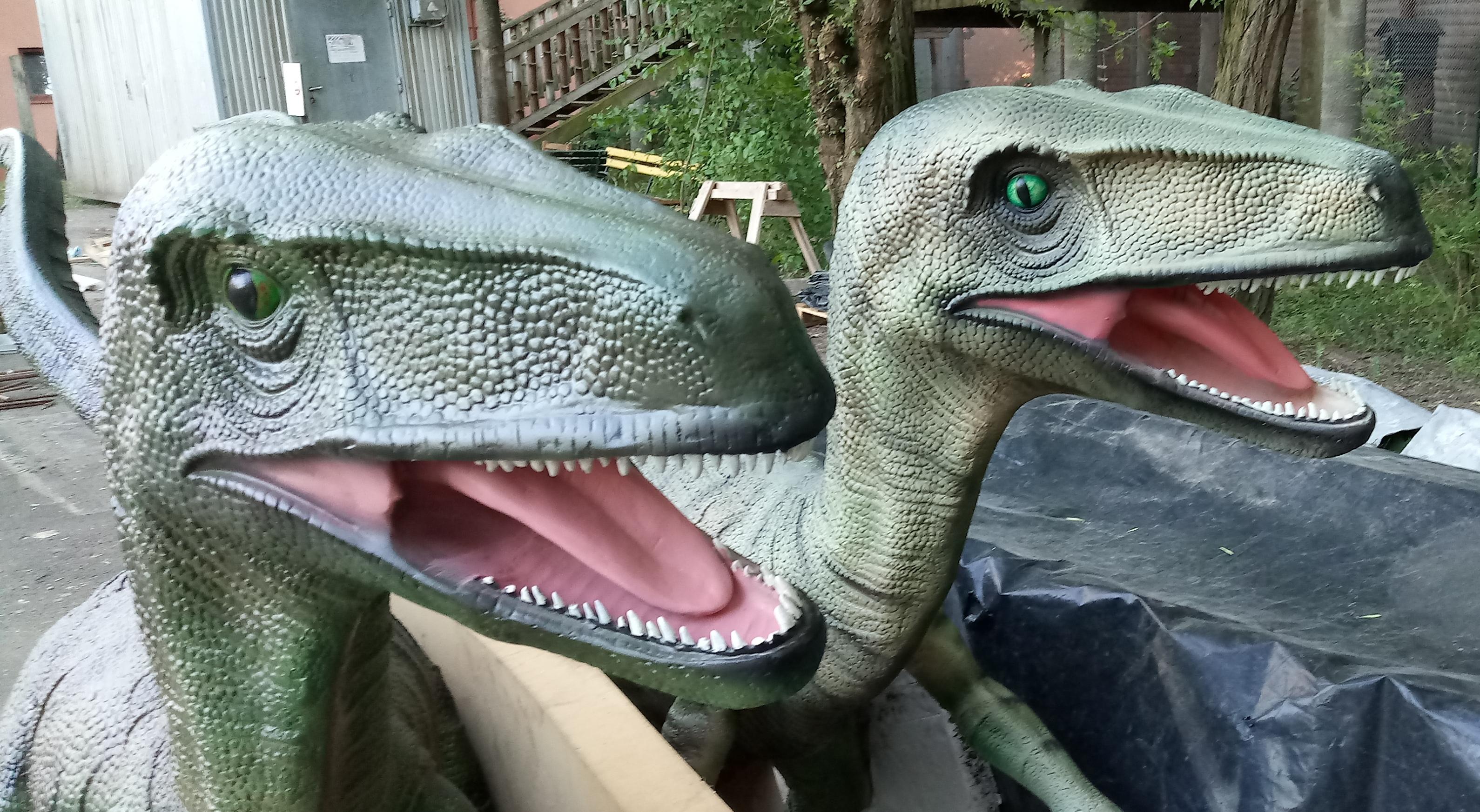 Velicoraptorok