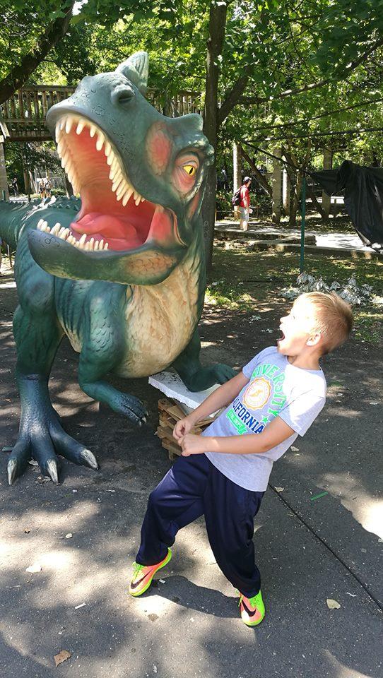 Elkapott pillanat a Ceratosaurussal