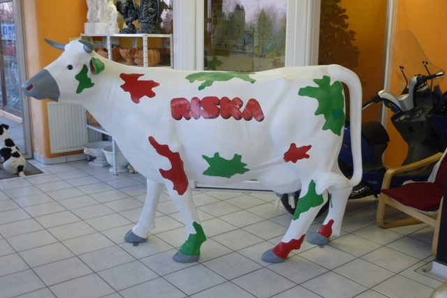 RISKA tehén-nagy/egyik oldala